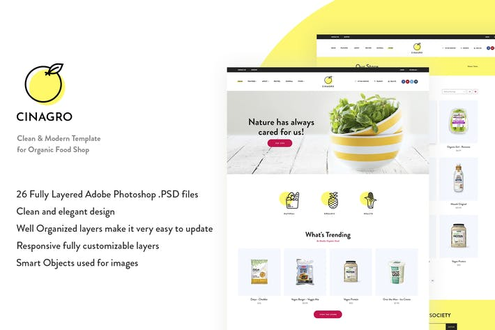 Thumbnail for Cinagro - Organic Food Shop PSD Template