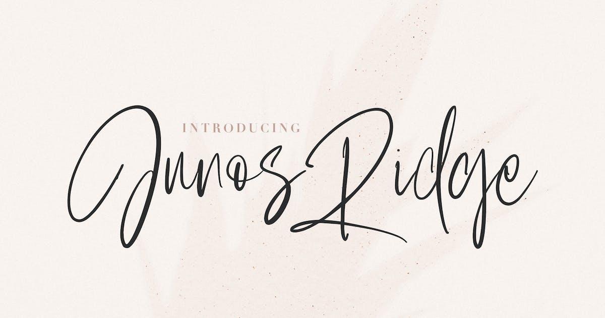 Download Junos Ridge - Handwritten Brush Font by maulanacreative
