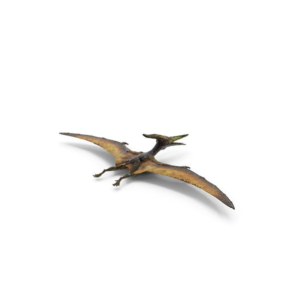 Pteranodon Fliegendes fleischfressender Reptil