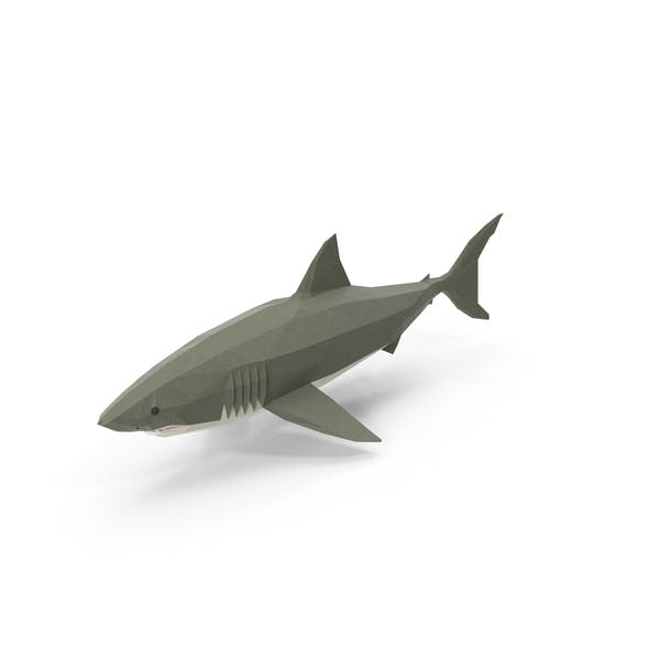 Low Poly Shark