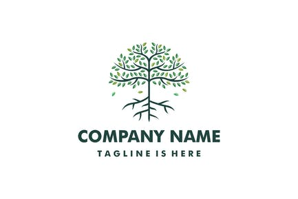 Tree And Root Logo