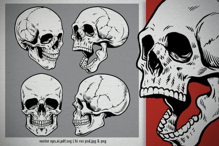 Thumbnail for set hand drawn style of vintage human skull