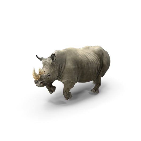Rhino Adult Running Pose Fur