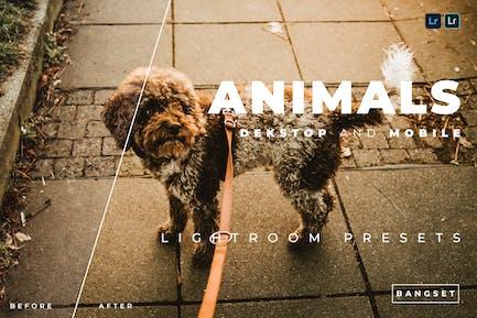 Настольные и мобильные предустановки Lightroom для животных