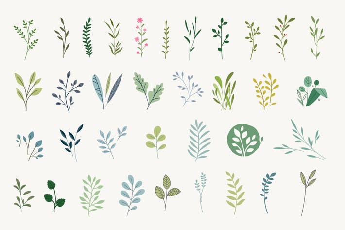 Thumbnail for Set of natural and floral elements