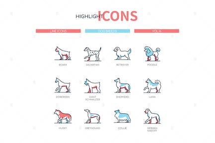 Razas de perros - diseño de línea moderna Íconos de estilo conjunto