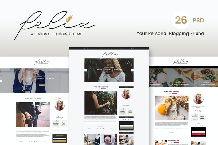 Thumbnail for Felix - Blog PSD Template