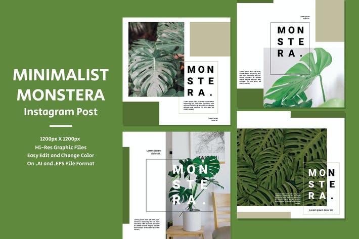 Thumbnail for Minimalist Monstera