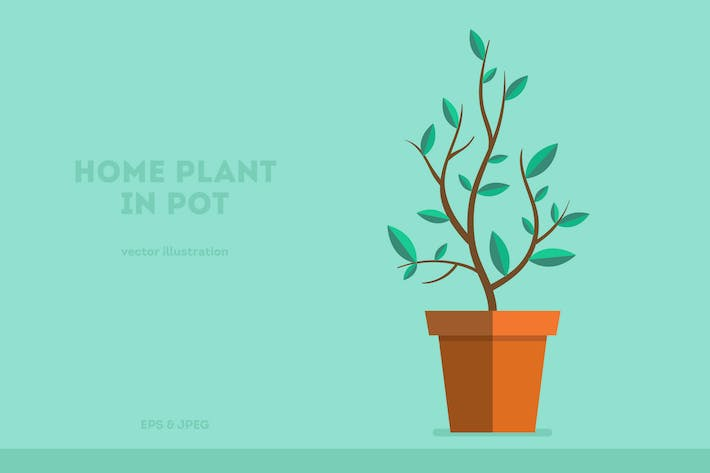 Thumbnail for Home Plant Illustration