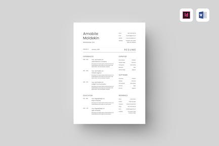 Resume   MS Word & Indesign