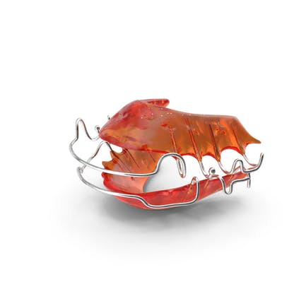Retenedor dental dental