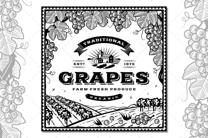 Thumbnail for Vintage Grapes Label Black And White