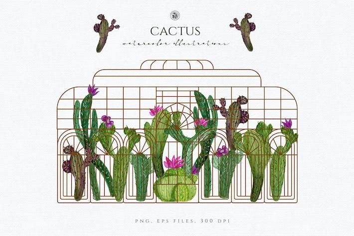 Thumbnail for Kaktus Aquarell Illustrationen