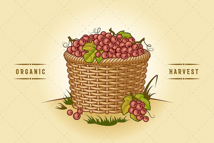 Thumbnail for Retro Basket Of Grapes