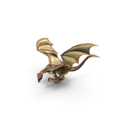 Magical Dragon Lurking