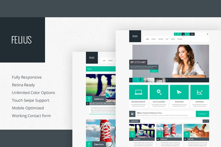 Thumbnail for Felius - Responsive Multipurpose Template