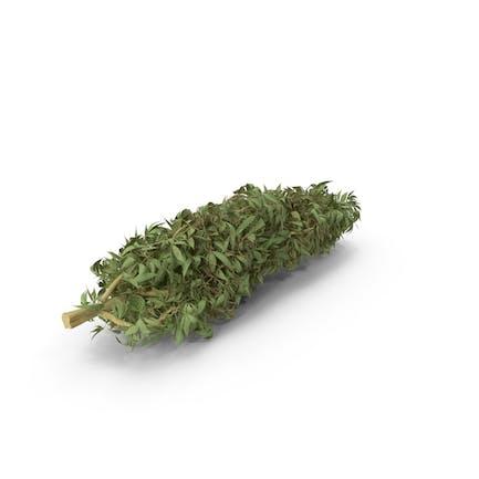 Capullos de marihuana
