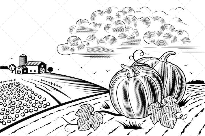 Thumbnail for Horizontal de la cosecha de calabaza blanco y negro