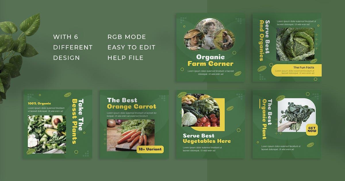 Download Organic Corner | Instagram Post by Vunira