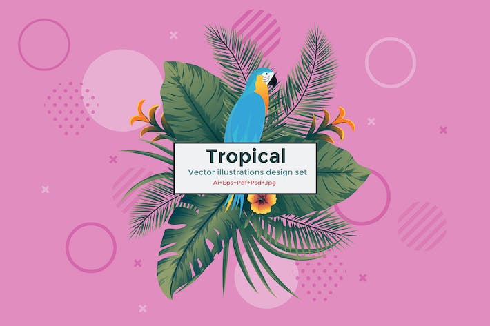 Cover Image For Set of 5 Tropical Flyer Template