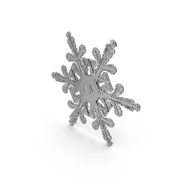 Thumbnail for Silver Snowflake