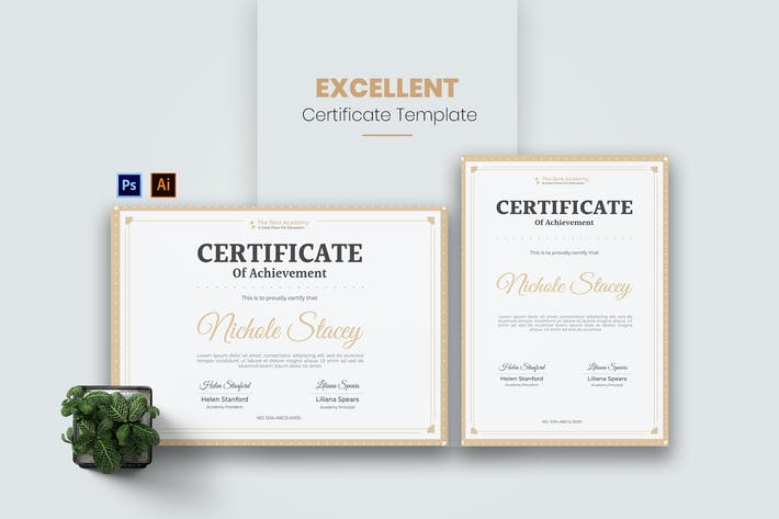 Excellent Academy Certificate