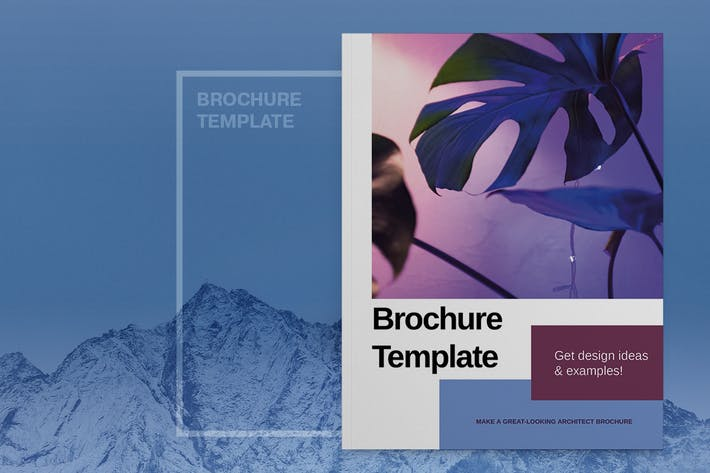 Purple Brochure Adobe Template