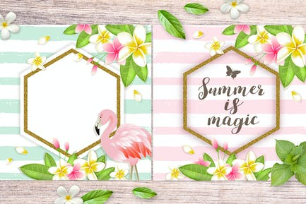 Tropical Summer Backgrounds