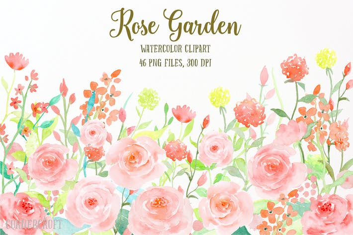 Thumbnail for Watercolor Flower Collection Rose Garden
