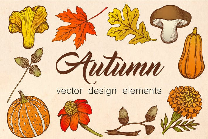 Thumbnail for Autumn Vector Design Elements