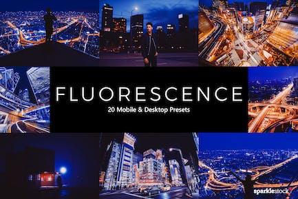 20 Fluorescence Lightroom Presets & LUTs