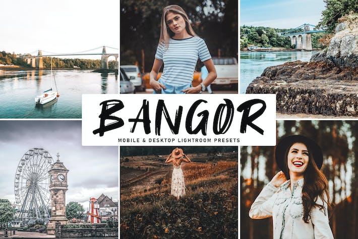Thumbnail for Bangor Mobile & Desktop Lightroom Presets