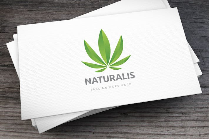 Thumbnail for Naturalis Logo Template