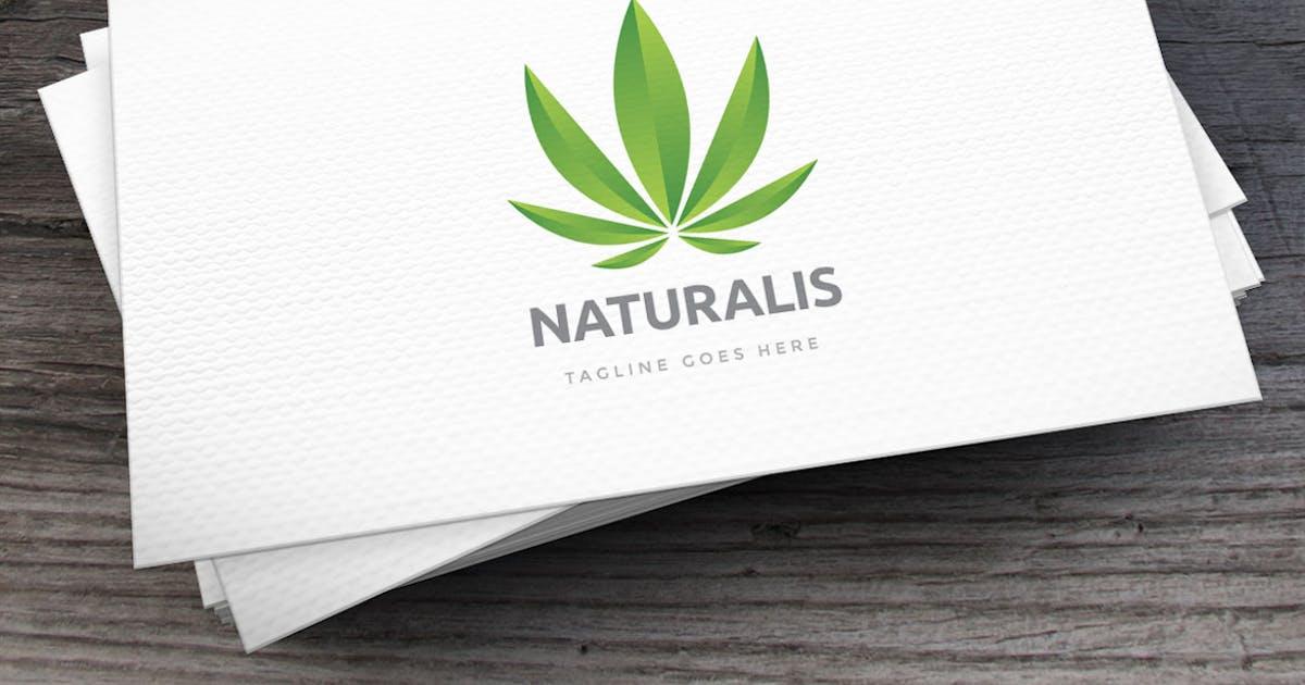 Download Naturalis Logo Template by empativo