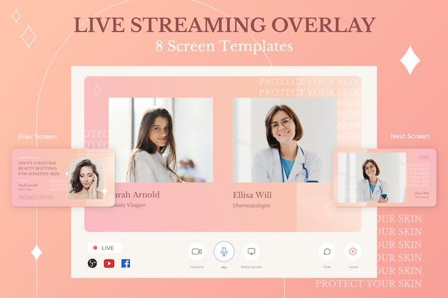 Streaming Overlay