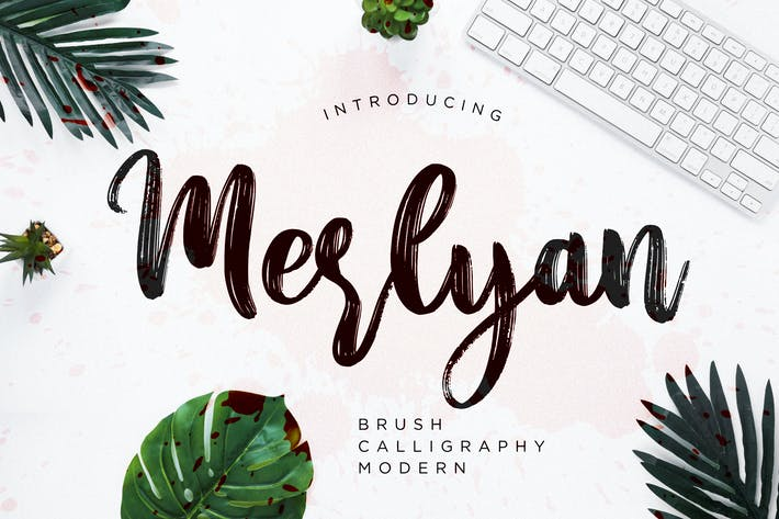 Cover Image For Merlyan Brush Calligraphy