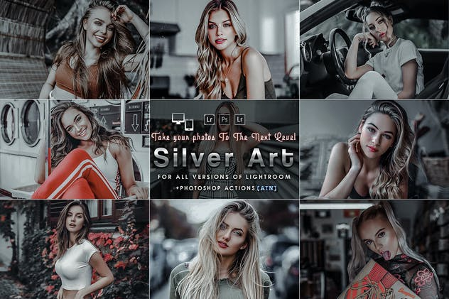 Silver Mood (Actions and Presets)