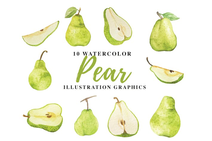 10 Watercolor Pear Illustration Graphics