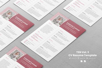 TSN CV Template Vol. 3