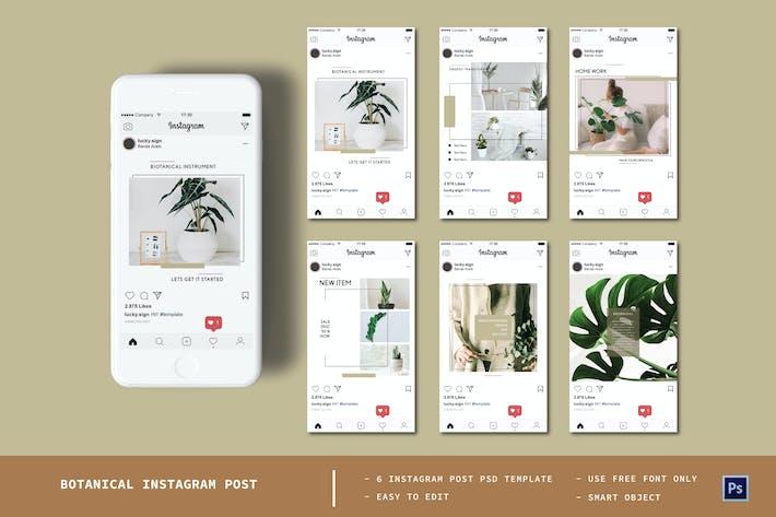 Thumbnail for Botanical Instagram Post