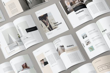 Nano Indesign Brochure