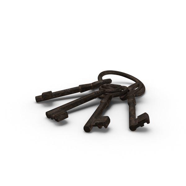 Thumbnail for Old Skeleton Keys on Ring