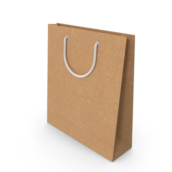 Thumbnail for Craft Packaging Bag with White Handles