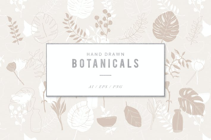 Thumbnail for Hand Drawn Botanical Illustrations