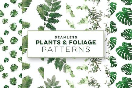 Plants & Foliage Seamless Patterns