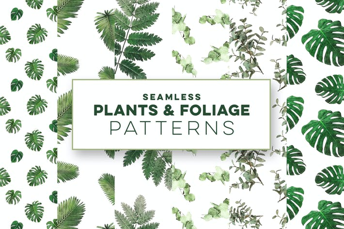 Thumbnail for Plants & Foliage Seamless Patterns