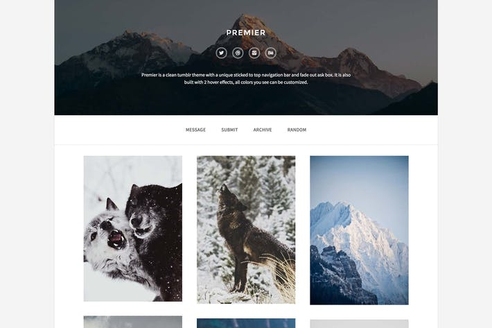 Thumbnail for Premier - A Responsive Theme