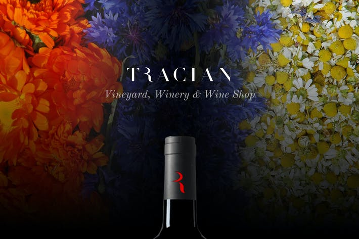 Thumbnail for Tracian - Wine WordPress Theme