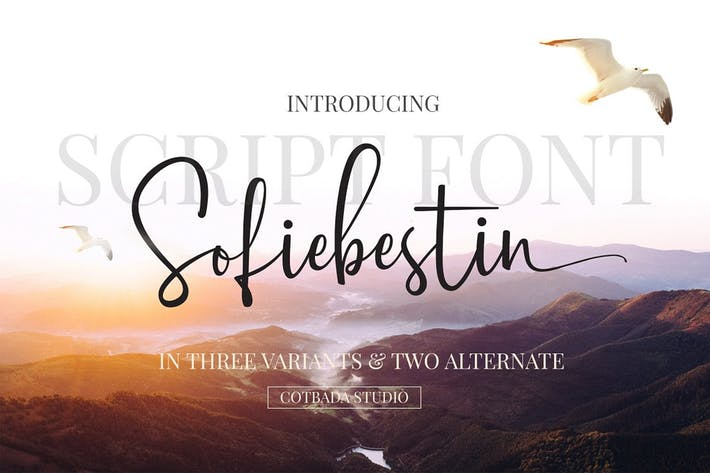 Thumbnail for Script Sofiebestin