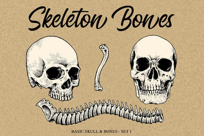 Cover Image For Skeleton handrawn 1